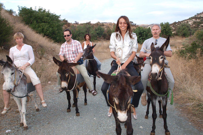 donkey safari cyprus ayia napa limassol protaras nicosia pahos luxcy services