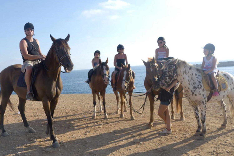 horse rides cyprus ayia napa protaras limassol nicosia pahos luxcy services